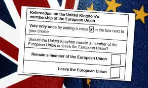 EU vote 1