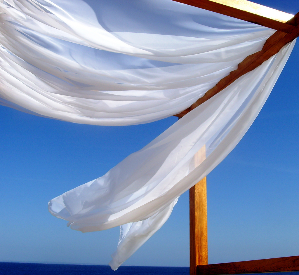 summer wind