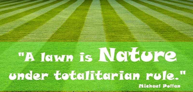 Lawn is Nature Quote